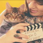 Best Coast + OMG Kitties = New Video